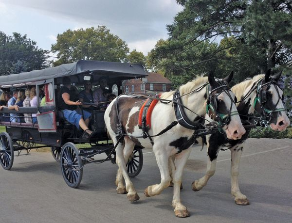 Amish Country Carriage Ride