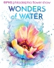 Philadelphia Flower Show - Wonders of Water