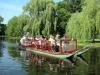 Swan Boat Ride, Boston Common