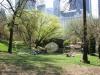 New York's Central Park - Photo by Doug Kerr